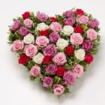 rose heart mixed