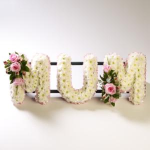 Mum Tribute Frame