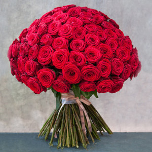 dramatic 100 red roses