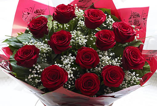 Red Roses With Gyp