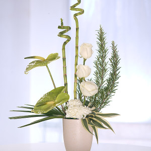 Modern Cream Arrangment