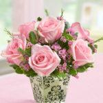 pink rose vase