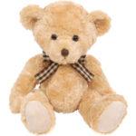 thomas the teddy bear