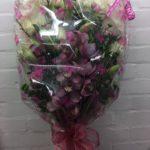 flowers in cupar