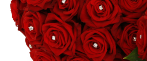 RED ROSES BRIDE HAND TIE