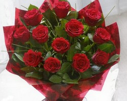12 Red Rose Ht