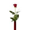 Single kiss vase