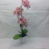 Artificial Pink Phalaenopsis in White Ceramic Pot