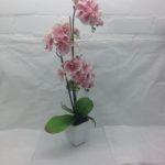 Artificial Pink Phalaenopsis in White Ceramic Pot